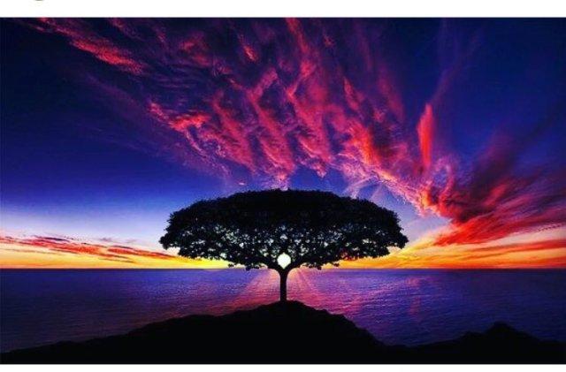 bien sunset